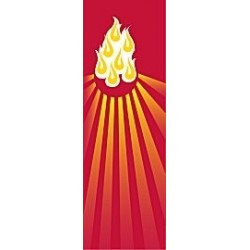 Flames Banner
