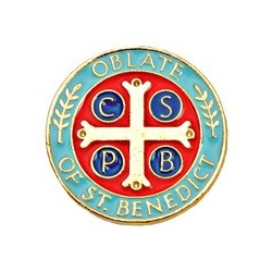 Oblate Lapel Pin