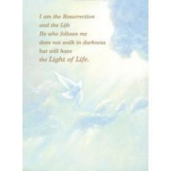 Dove In Sky Mass Card