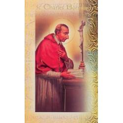 Biography of St Charles Borremeo