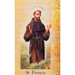 Biography of St Francis of Assisi