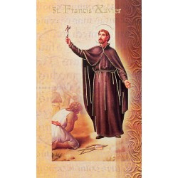 Biography of St Francis Xavier