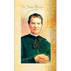 Biography of St John Bosco