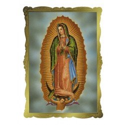 Ou Lady of Guadalupe Mass Card